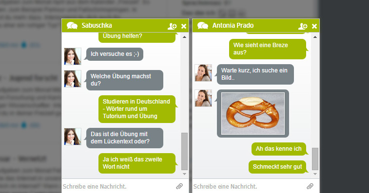 20150728_goethe_dfd_chat_1